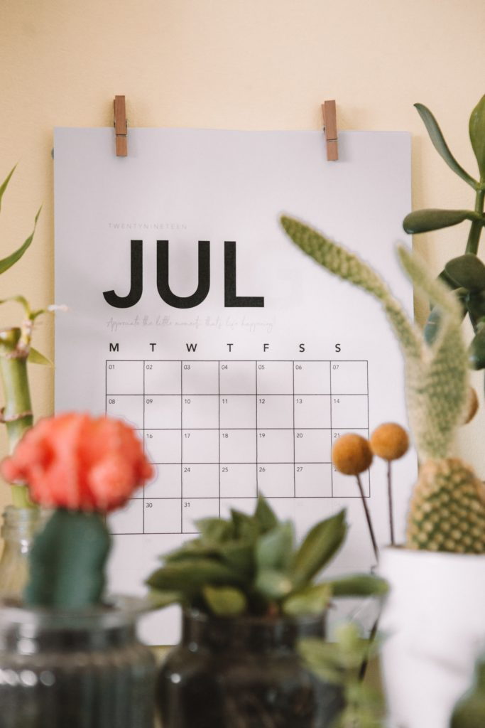 A calendar showing the month of July, surrounded by cacti.